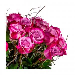 """Buchet 25 Trandafiri Mov """"Mystery"""""""