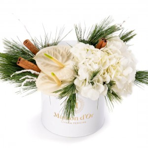 Box with anthurium and white hydrangea - Christmas Collection