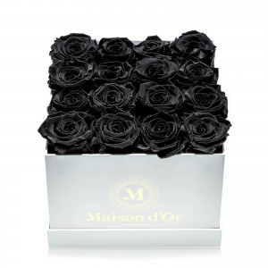Box of 17 black cryogenic roses