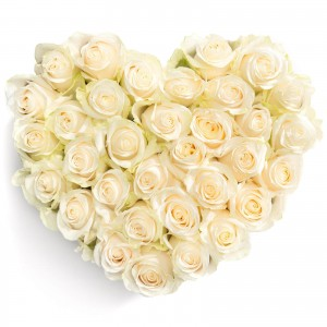 Heart box with 33 white roses