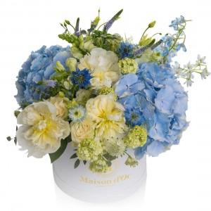 Colectia Desire-Cutie cu hortensie si Delphinium