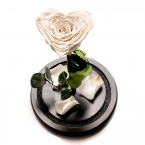 White heart-shaped cryogenic rose * Limited edition