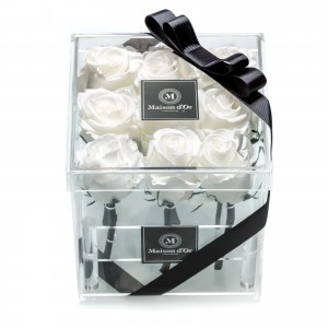 Acrylic box 9 cryogenic roses