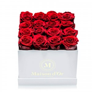 Box of 17 red cryogenic roses