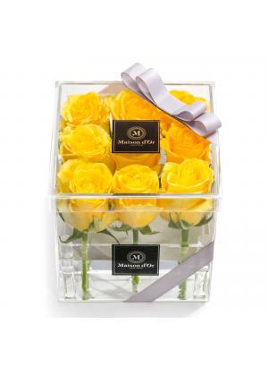 Cutie acrilica 9 trandafiri galbeni