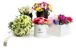 florarie online, flori in cutii